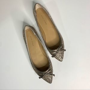 Banana Republic Glitter Pointed Ballet Flats